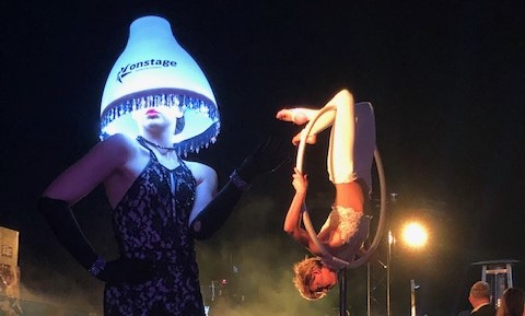 Event entertainment - Lyra and lampshade
